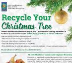 Azusa Tree Recycle