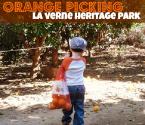 Heritage Park Oranges